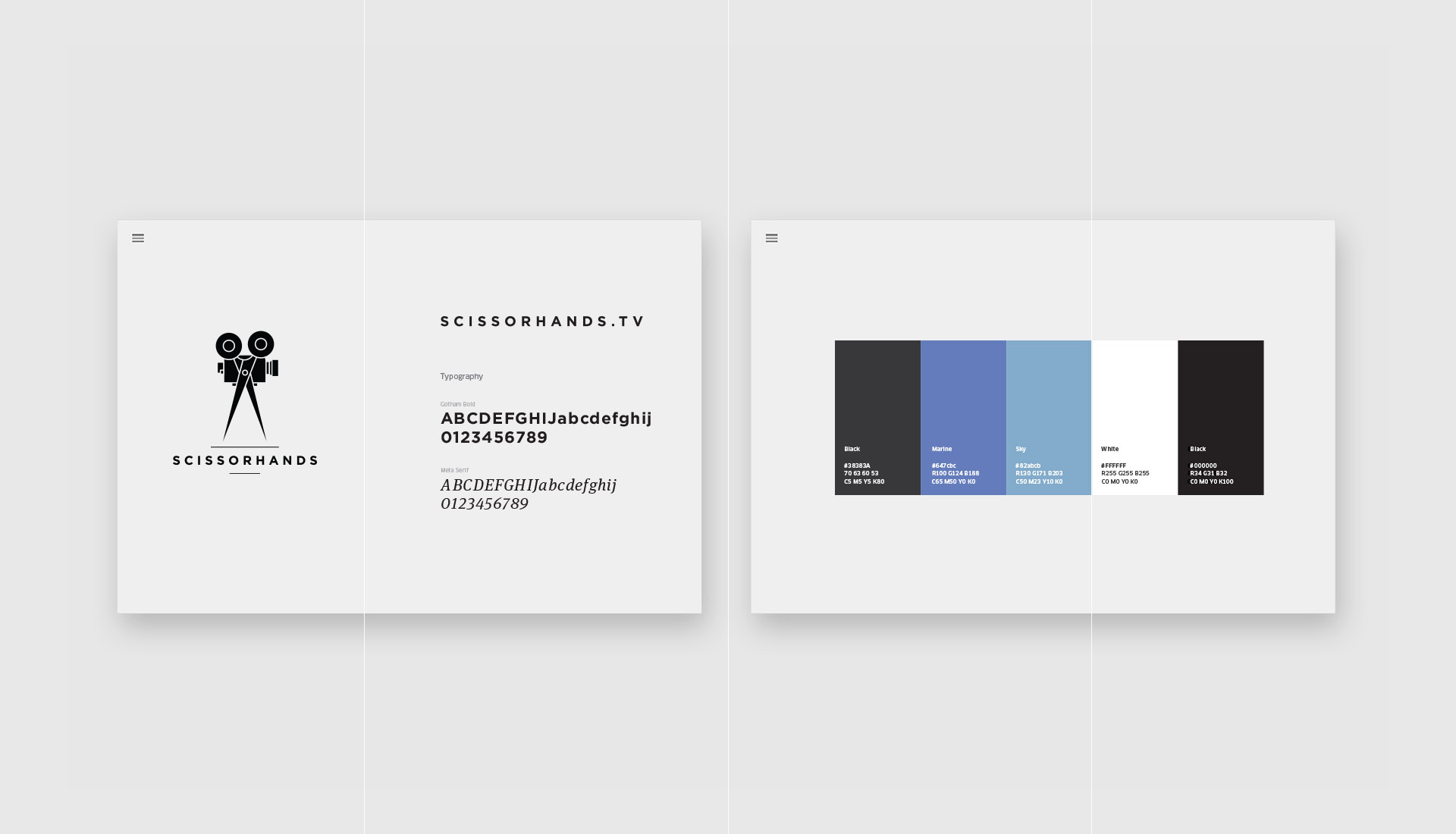 Identity guidelines design